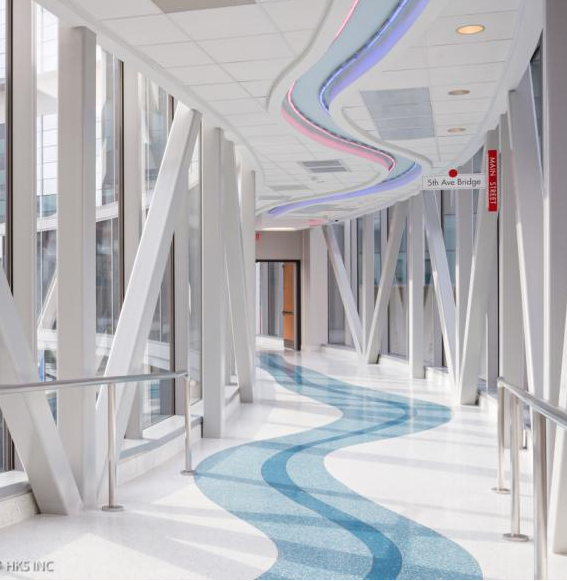 Natural Light Fills The Footbridges Connecting Areas Of The Benjamin Russell Hospital For