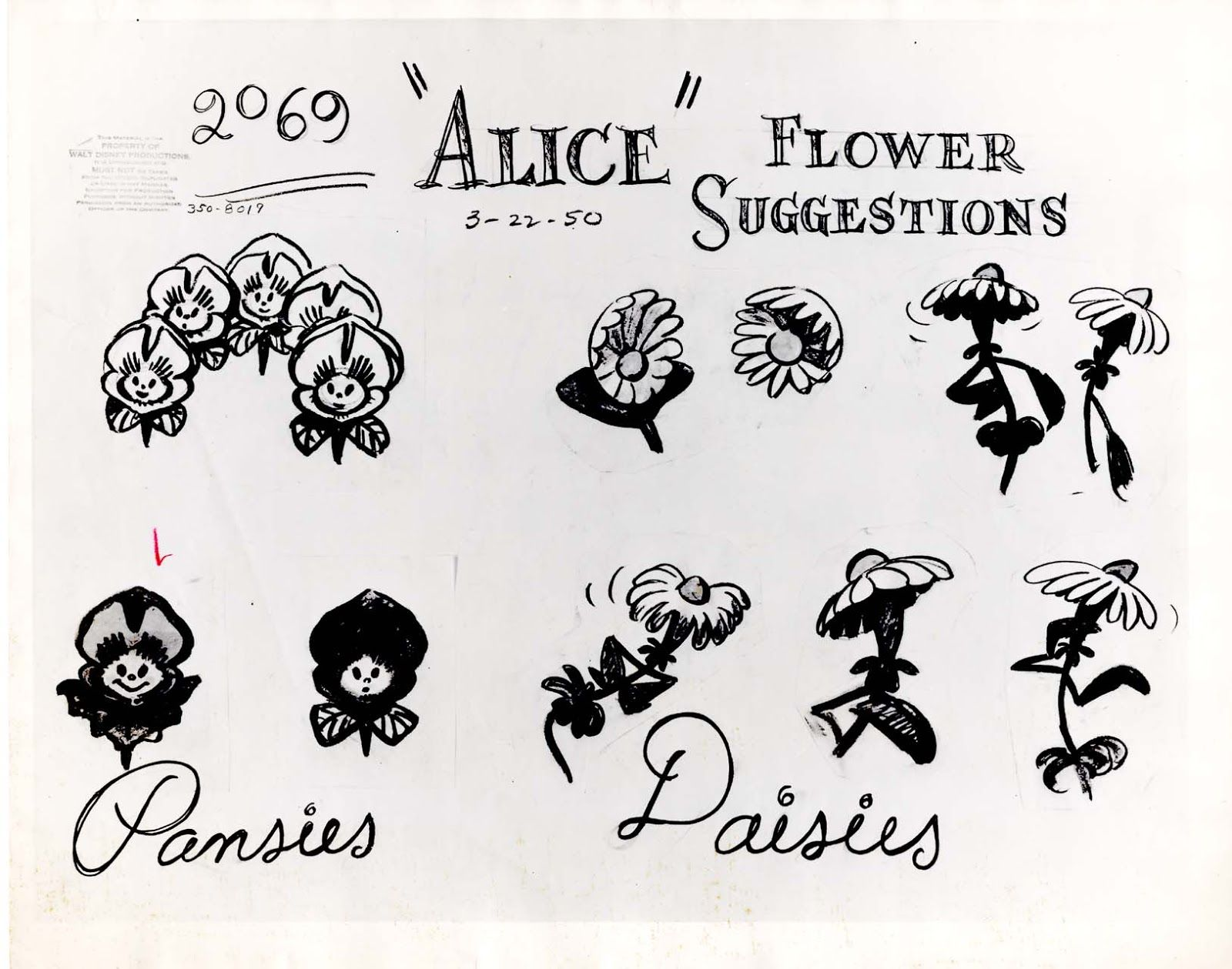 Animation Model Sheet 350 8019 Flower Suggestions For Pansies