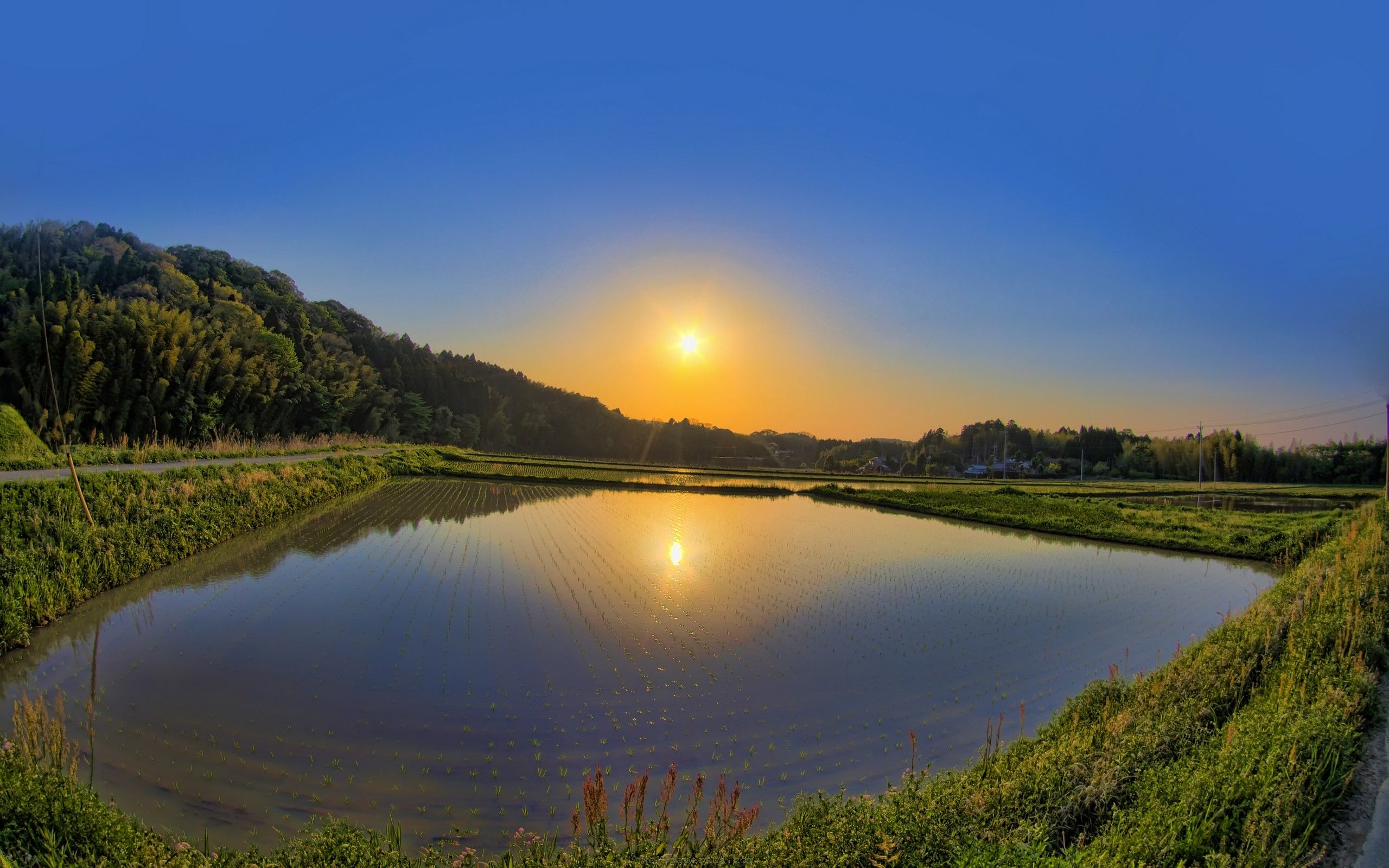 Картинки лето солнце озеро