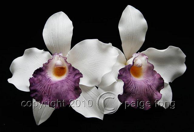 Gumpaste Orchid Cattleya Gum Paste Flowers Candy Flowers Edible Flowers