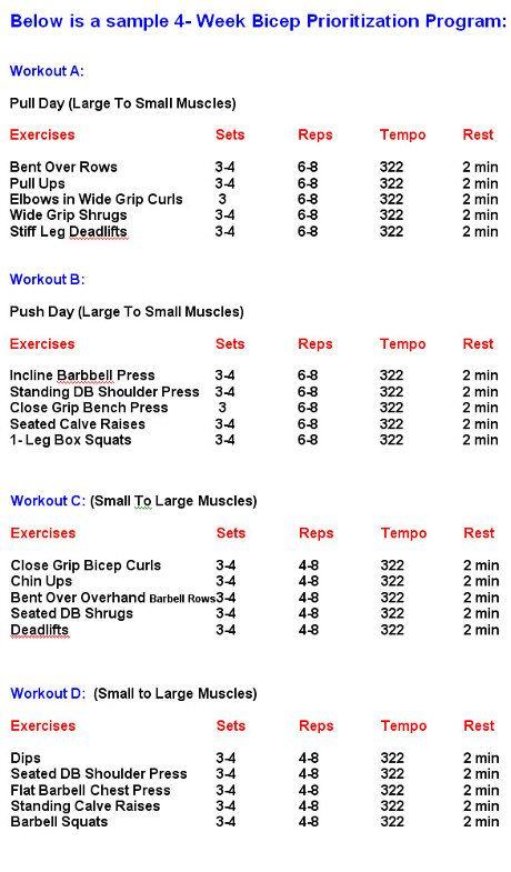 Pin On Workout Muscle building workout plan pdf