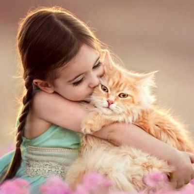 Attitude Dp Girl Whatsapp Dp Free Download Images For Lover And Whatsapp Dp In Hindi Status Download And Best Images Romantic Whatsap Animals Cute Animals Cats