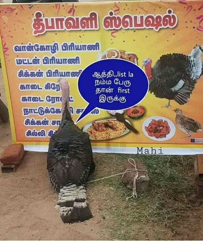 Pin by lenin rajesh on Humorous Comedy memes, Tamil