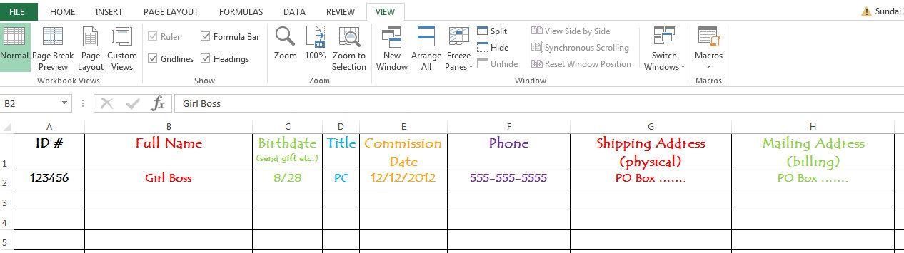 Consultant Contact List Spreadsheet Rodan and Fields can be used - contact list