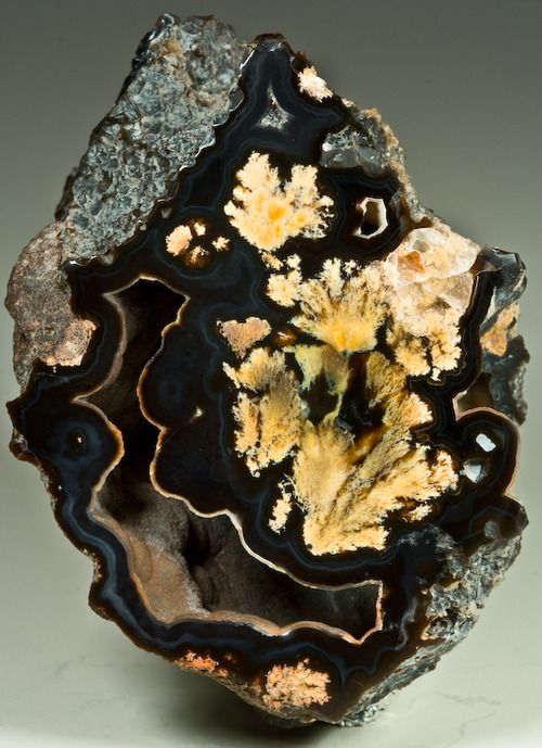 Bouquet agate, Texas