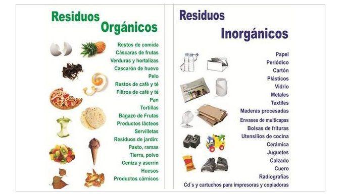 50 Ejemplos De Basura Organica Basura Organica Basura Inorganica Alimentos Para Colorear