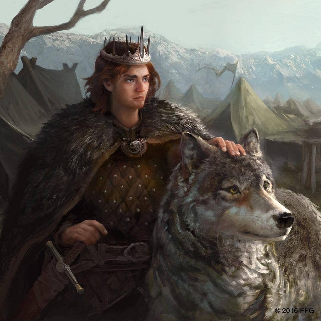 Robb Stark | Asoiaf art, Robb stark art, A song of ice and fire