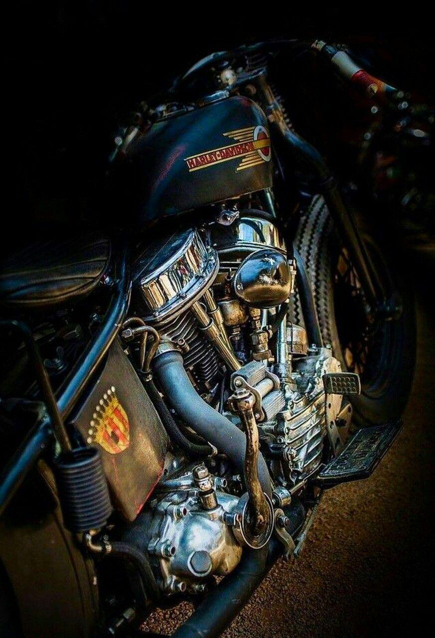 #harleyddavidsonpanhead #harleydavidsonmotorcycles
