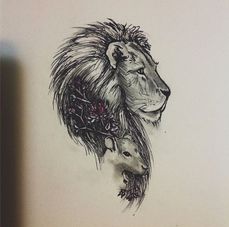 Image result for lion and lamb tattoo   Ink dreams   Pinterest ...