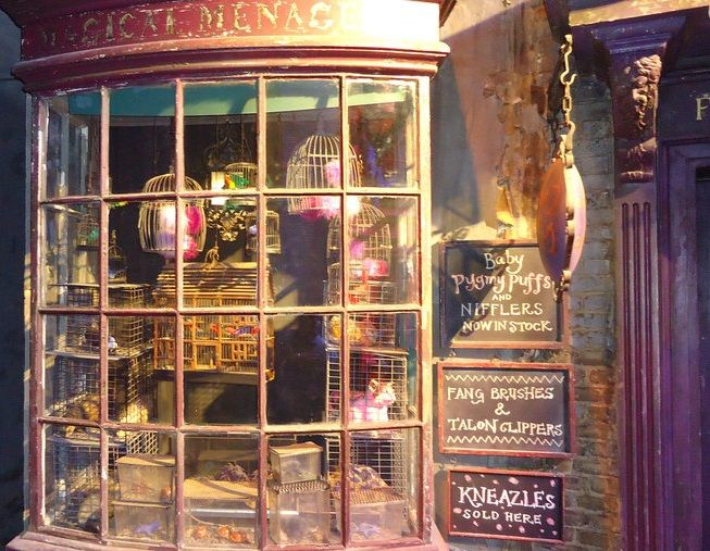 diagon alley shop window it 39 s a pane in the glass harry potter store diagon alley harry. Black Bedroom Furniture Sets. Home Design Ideas