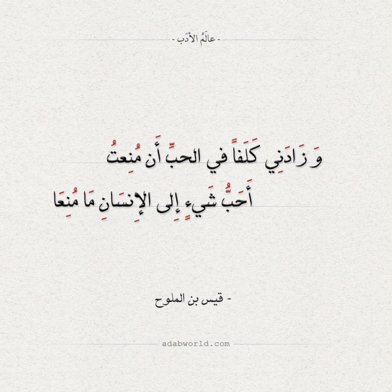 إن البوح يحيي الحب يوسف زيدان من رواية محال عالم الأدب Arabic Quotes Quotes Literature