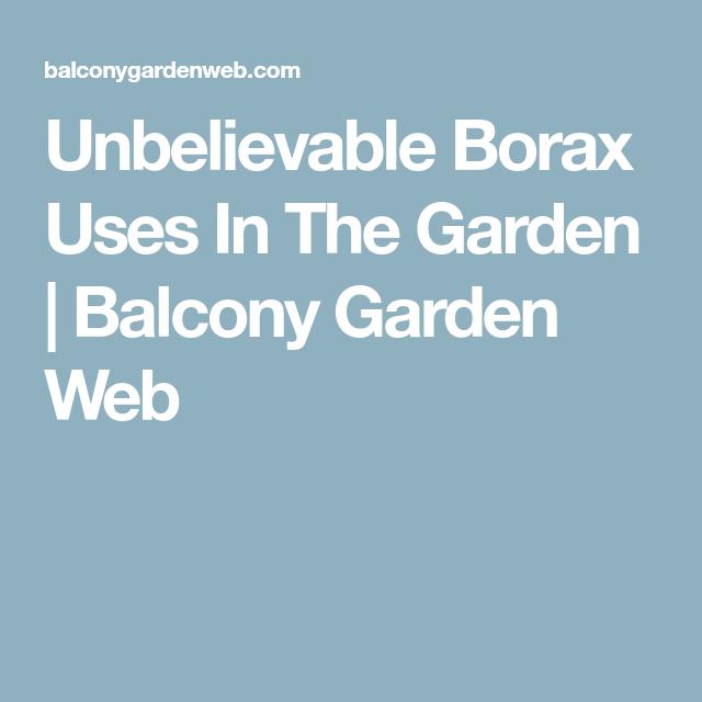 Nice Unbelievable Borax Uses In The Garden