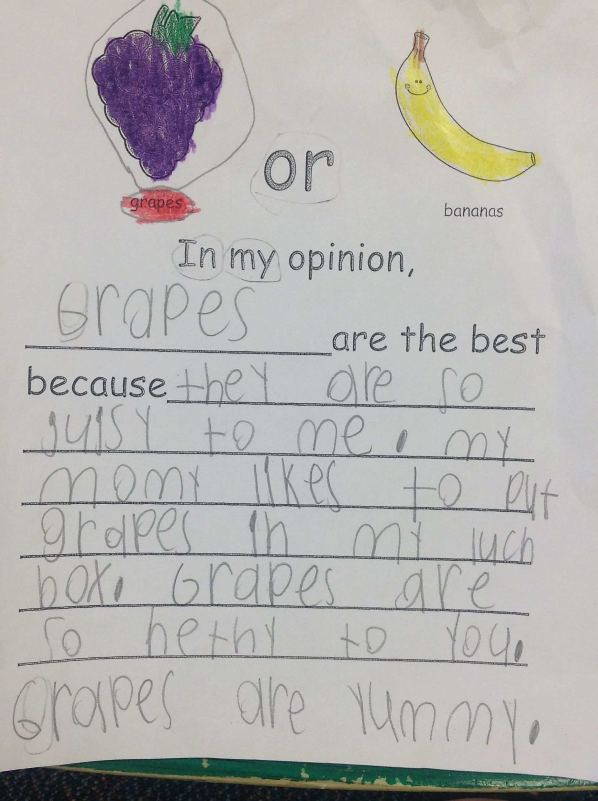 Fruit Opinion Writing