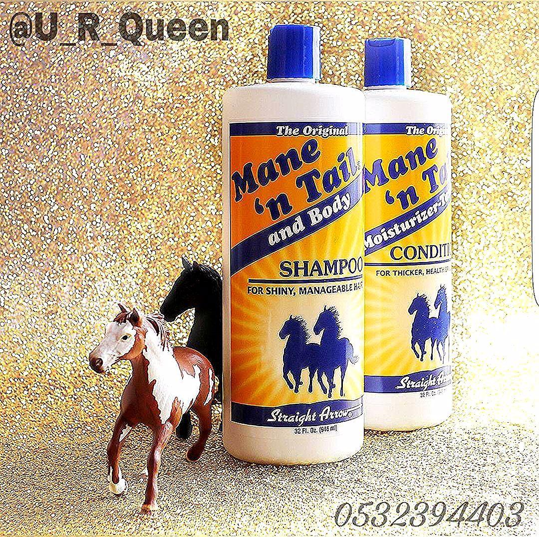 شامبو ذيل الحصان الأوريجينال جدة ذيل الحصان عنايه عناية الشعر طبيعي شعر طبيعي تنظيف تطهير ترطيب نعومه نعومه ال Shampoo Horses The Originals
