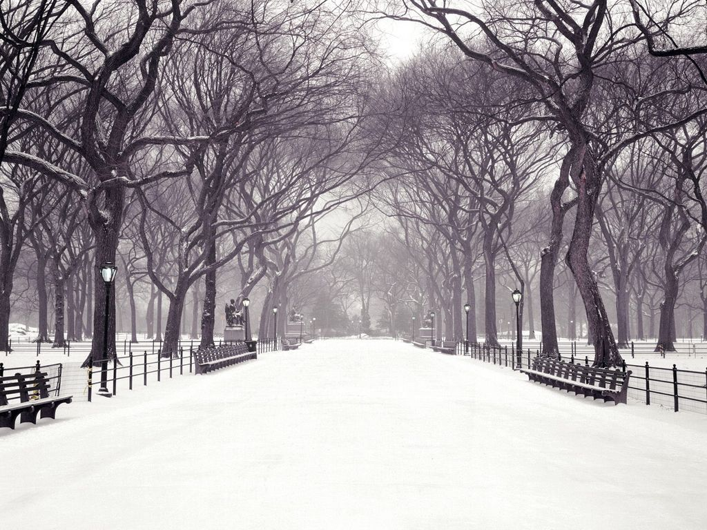 Hecallsmestatuary Walk Central Park New York City New York Christmas Wallpaper Central Park Winter Winter Wallpaper New York Christmas