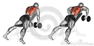 #arm #bench #dumbbell #Exercising #fitness #Gleitschei #gleitscheiben fitness #arm #bench #dumbbell...