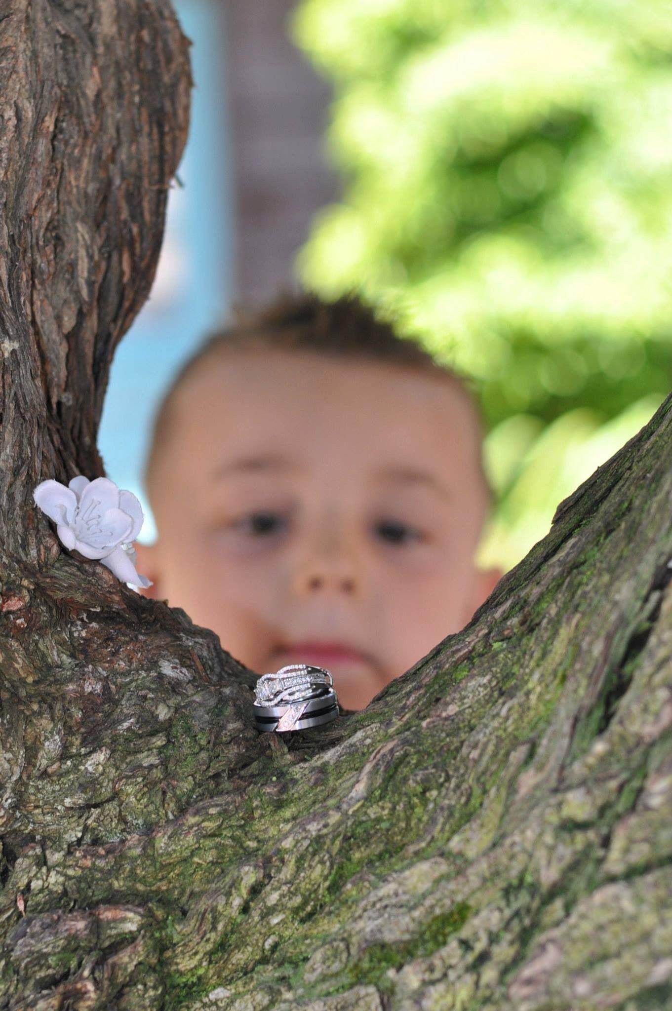 ring bearer wedding rings in tree blurred out ring bearer focus on rjngs