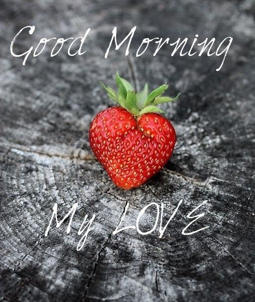 Good Morning My Love Good Morning My Love,⋩ Ⓜisc ☮ ✌ 2 Good Morning My Love morning good morning quotes good morning love good morning images Related Decor Tips and New Items.