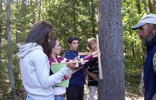 Students conduct a health checkup of a local forest or wooded area, take  forestry measurements