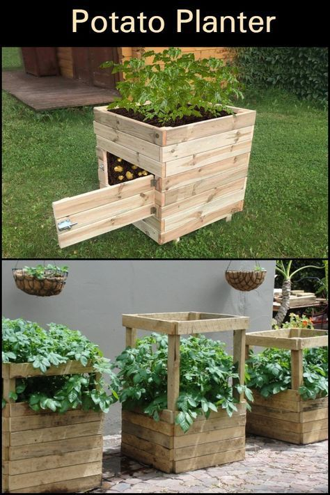 Eight and a half 'no dig' ways to grow the humble spud! -   25 garden decking inspiration