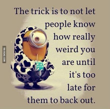 Thereu0027s A Fine Line Between Weird And Genius. Despicable Me QuotesDespicable  ...