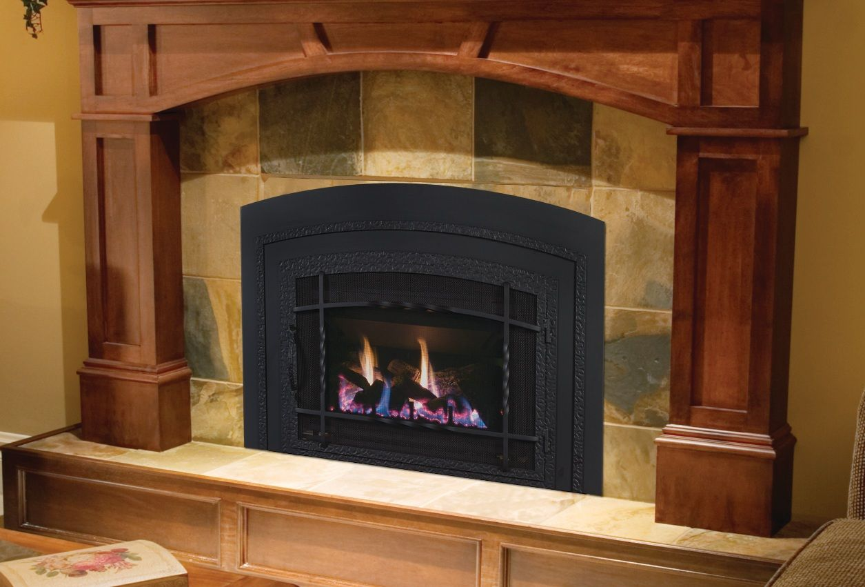 Elegant Gas Fireplace Insert In Awesome Living Room Design