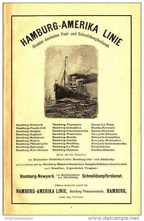Original-Werbung/Inserat/ Anzeige 1903 - HAMBURG-AMERIKA-LINIE -  ca. 180 x 120 mm