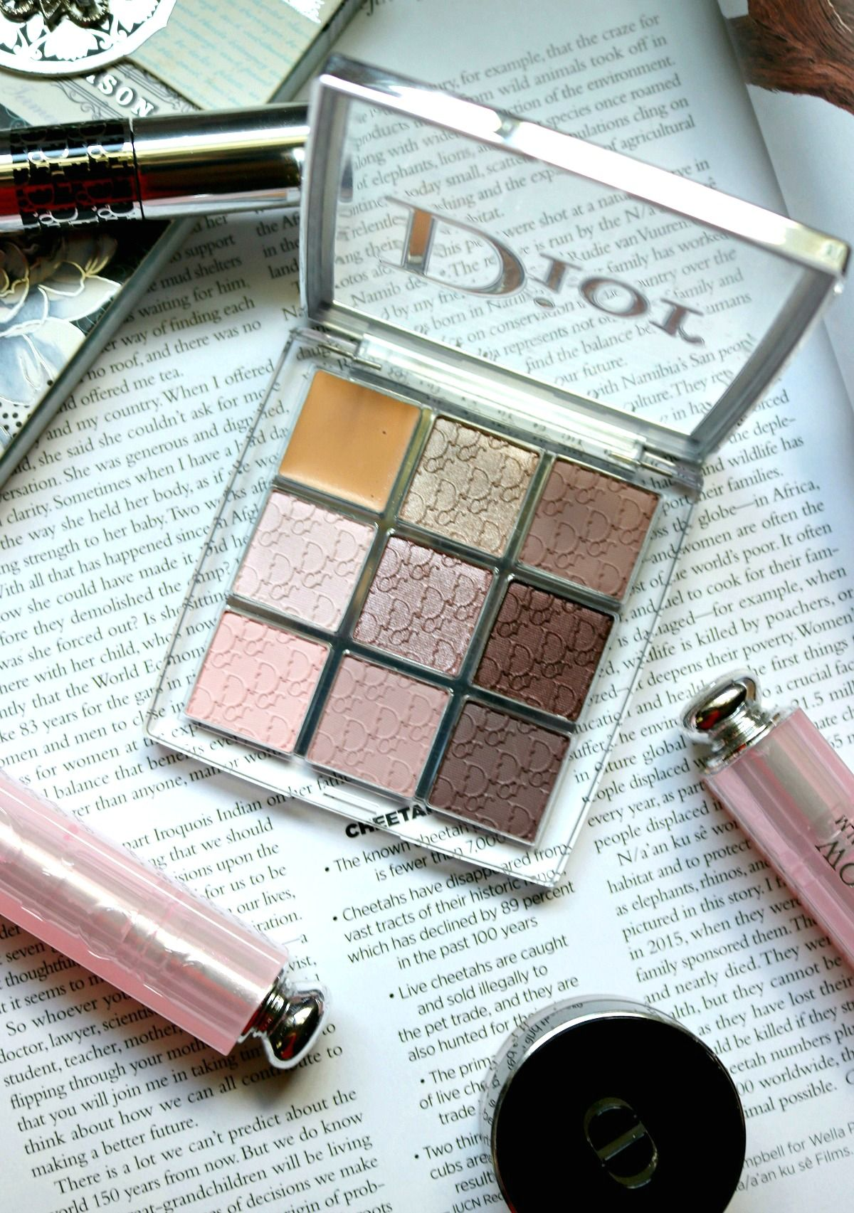 Dior Backstage Collection I The Cold Hard Truth I