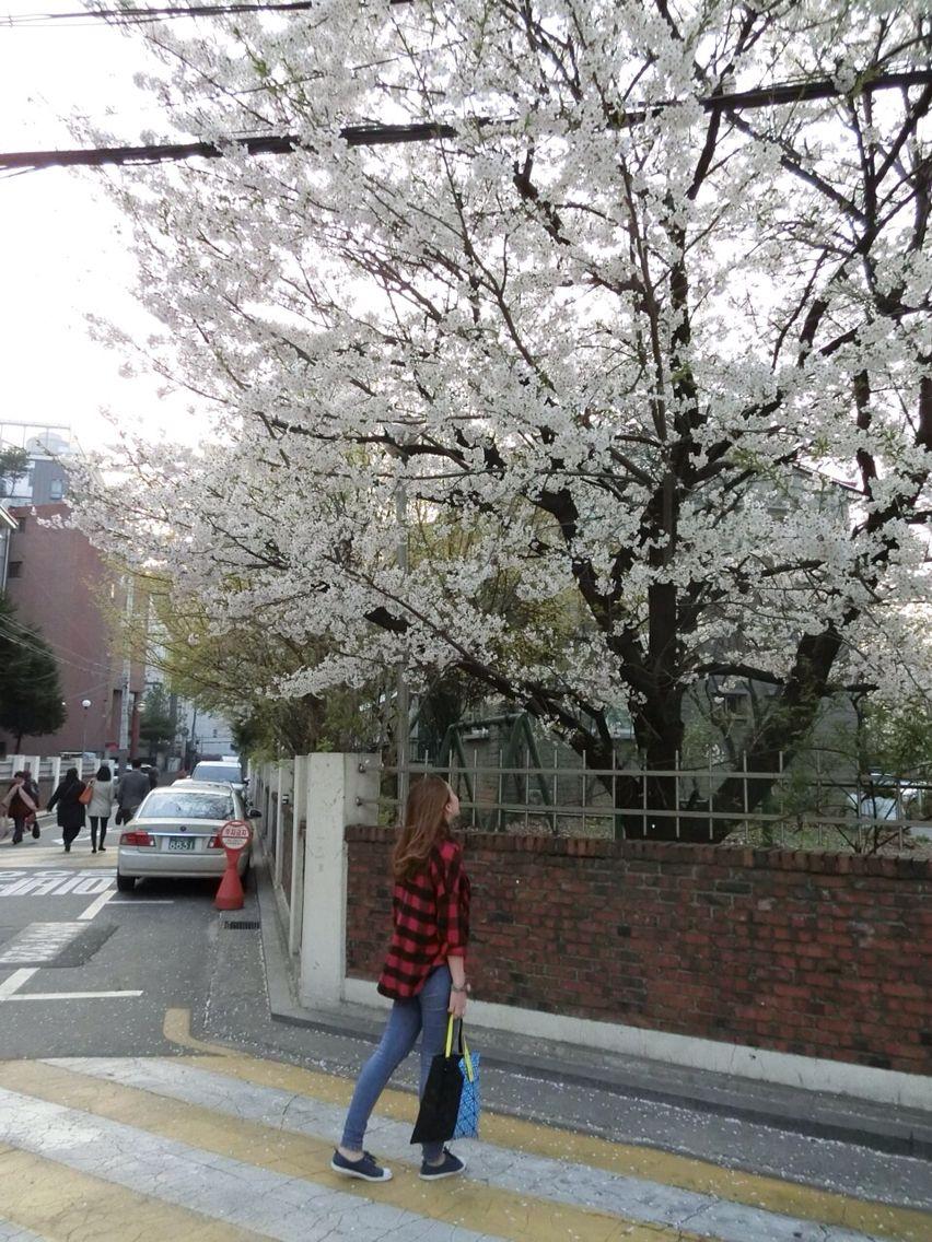 Seoul ~ again
