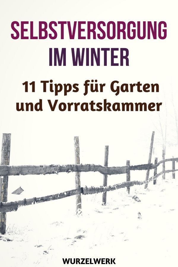 Photo of 11 tips for self-sufficiency in winter + winter supply checklist