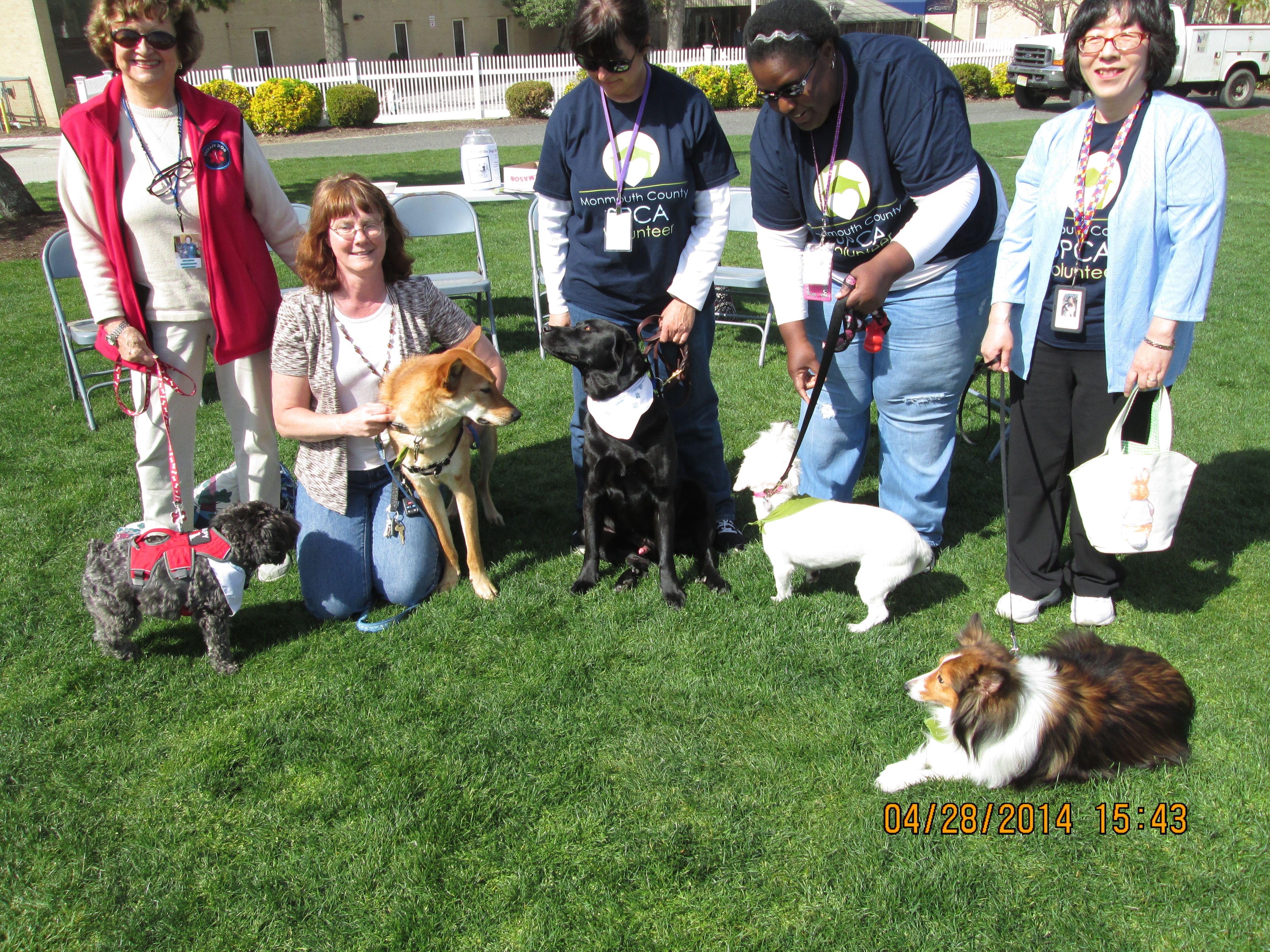 Service Dog Training Schools Nj