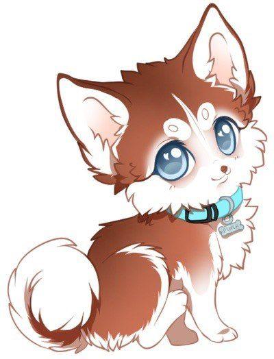 Cute Kawaii Wolf : kawaii, Мои, закладки, Drawings,, Chibi, Animal, Drawings, Kawaii