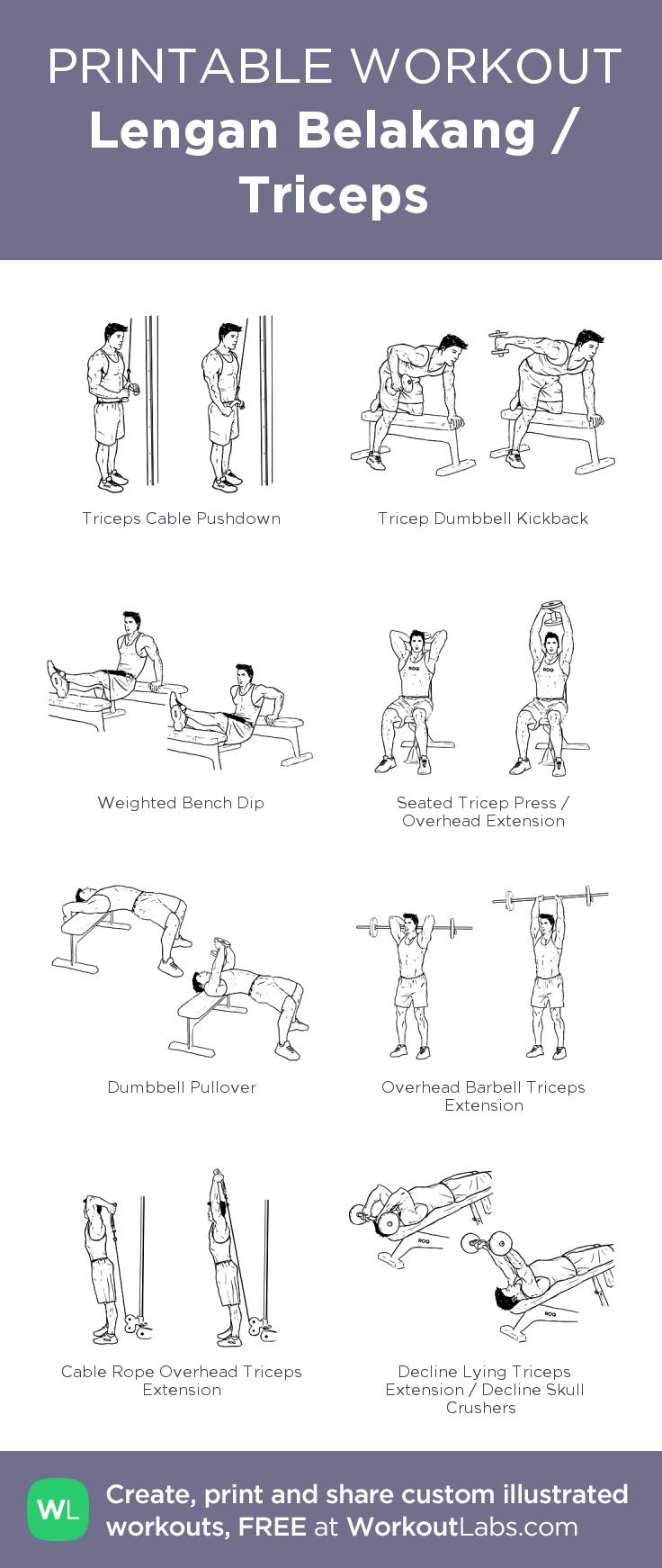 Lengan Belakang / Triceps · WorkoutLabs Fit