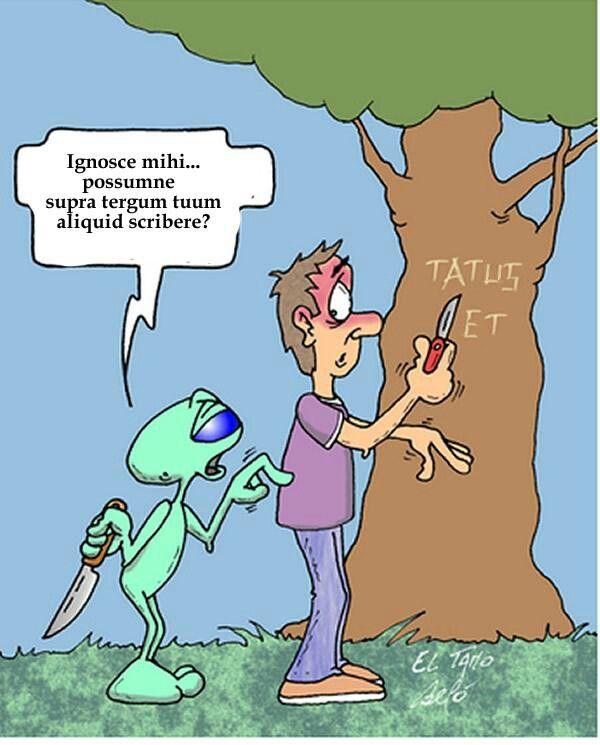 Tatus et