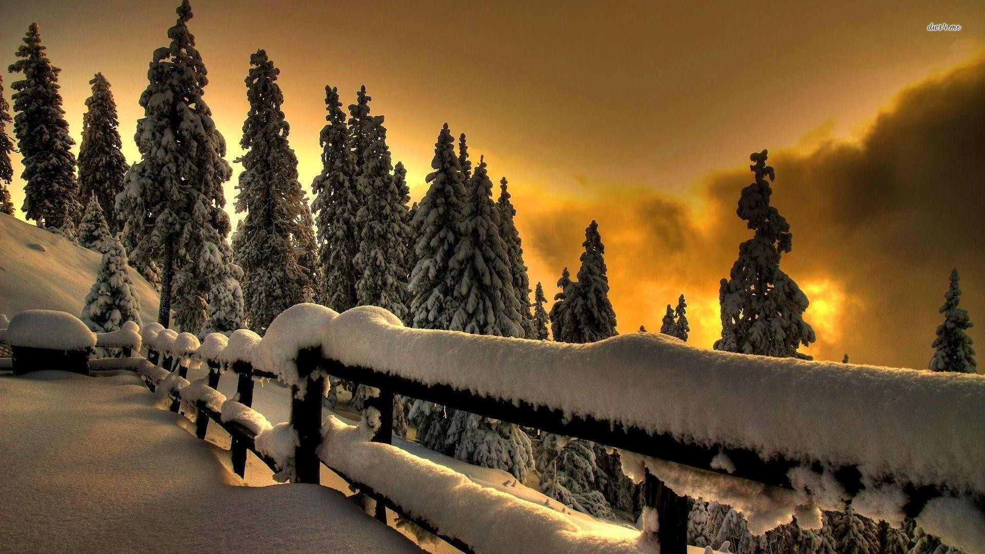 Winter Sunset Desktop Backgrounds Winter sunset ...