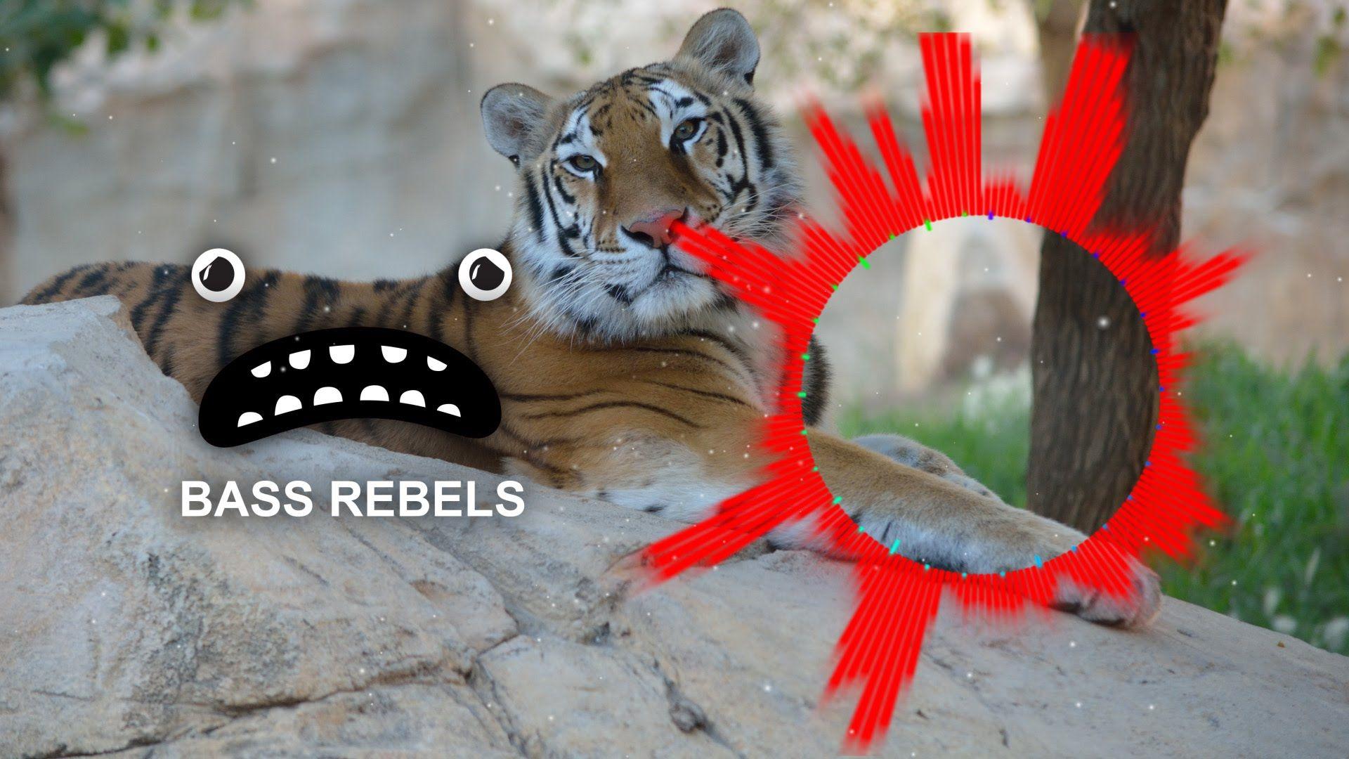 Dawns Tiger Non Copyrighted Music Copyright Music Edm Music Music