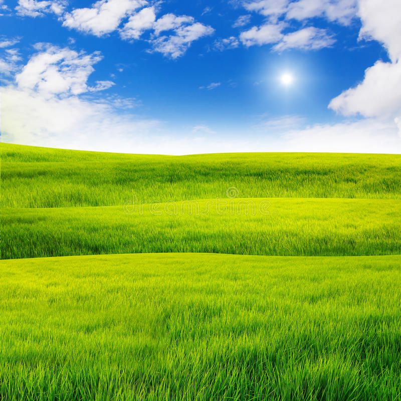 Green Grass Field With Nice Sky Sponsored Grass Green Field Sky Nice Ad Grass Field Sky Aesthetic Background