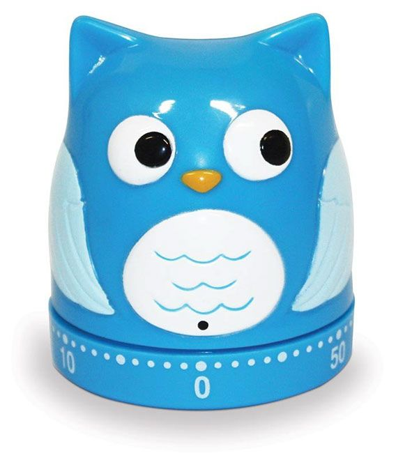 Itu0027s A Hoot Owl Kitchen Timer From Sarah J Home Decor.