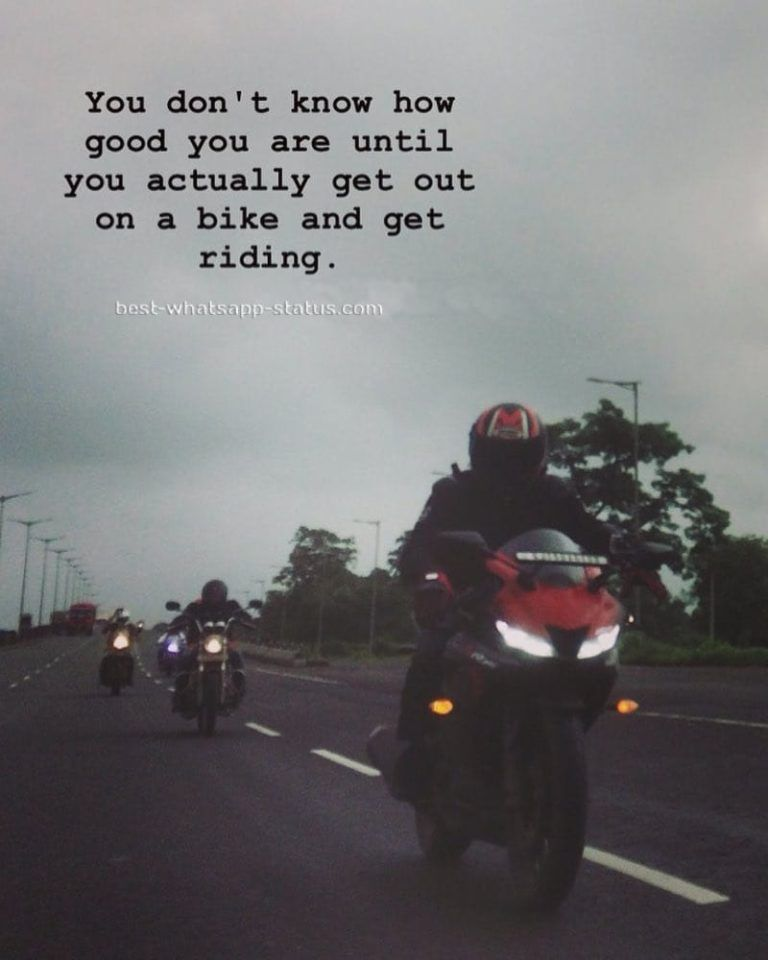 100 Best Quotes For Bike Lovers In 2020 Riding Quotes Best Quotes