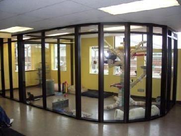 dog room outside dogroomoutside Cat kennel, Animal room