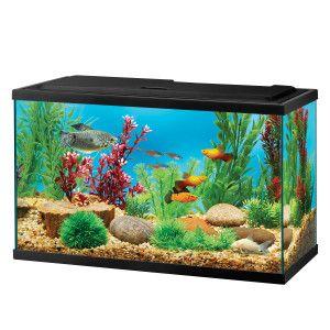 Top Fin 5 5 Gal Aquarium Starter Kit Aquariums Petsmart Betta Fish Fish Tank Aquarium