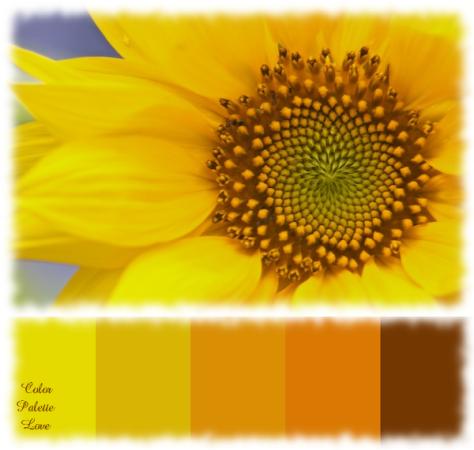 {Color Palette Love} Sunflower   Color Palette Love ...