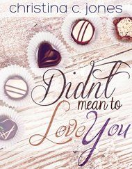 Didn't Mean To Love You by Christina C Jones ebook deal