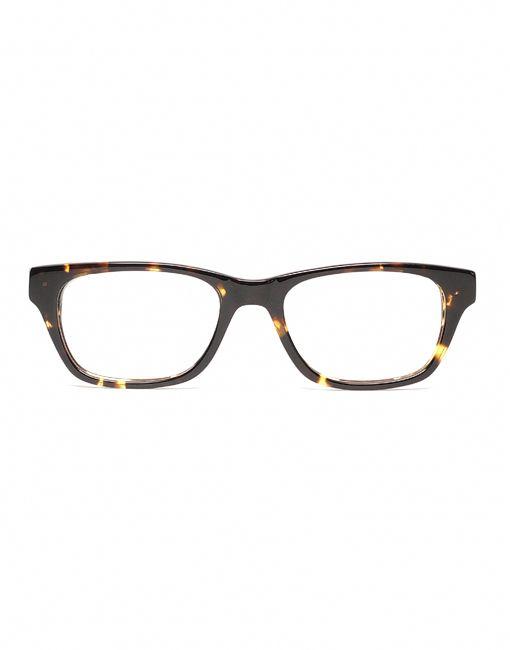 3e55392a31 Kids Glasses    The Miles Chestnut Tortoise