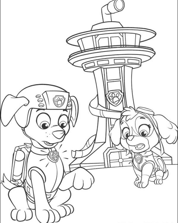 Zuma And Skye   Paw Patrol Coloring Pages