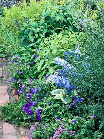 A blue and lavender border