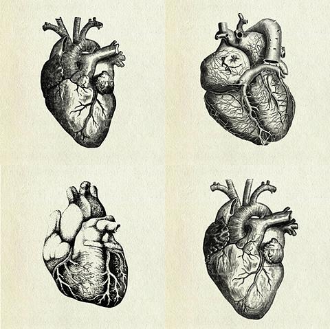 Pin von prova auf Vintage illustrations   Pinterest   Illustration