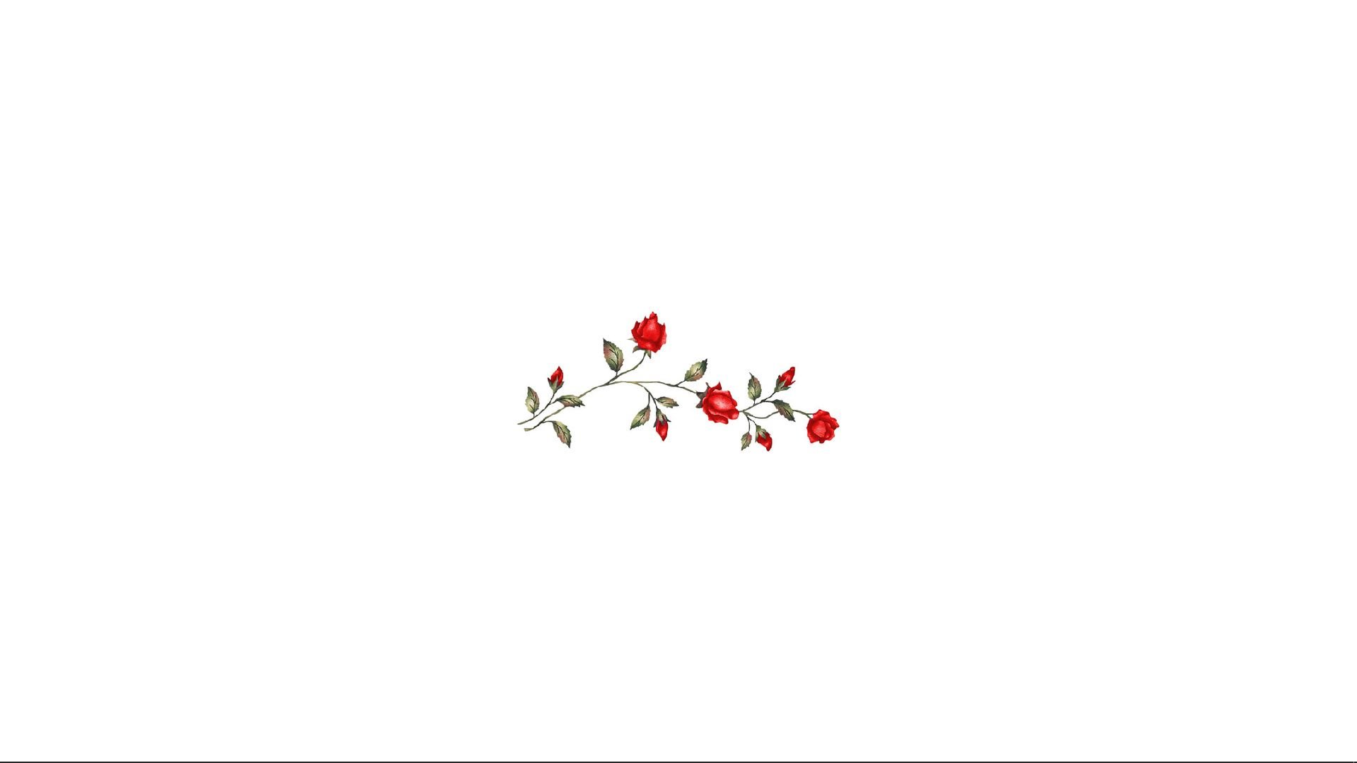 Red Roses Background For Computer White And Red And White Minimalistic Cute Basic Desktop Wallpaper Art Macbook Wallpaper Laptop Wallpaper Desktop Wallpapers