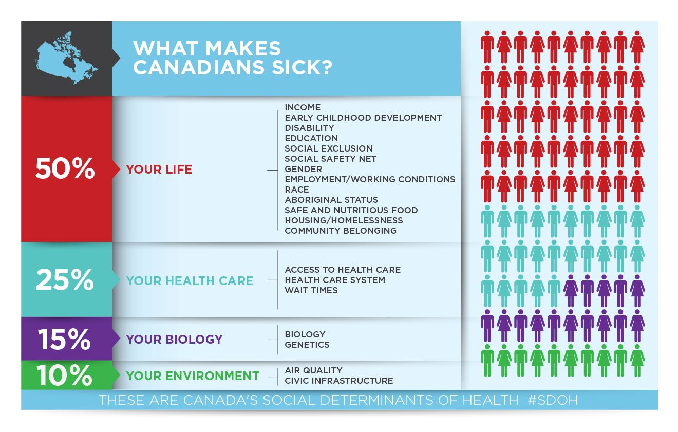 This infographic published by the canadian medical association on health care transformation illustrates how homelessness associated with low income also rh in pinterest
