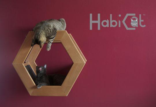 Wall-mounted habitat for cats | Gatificacin | Pinterest ...